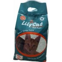 Lily Cat Kedi Kumu