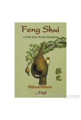 Feng Shui-Richard Webster