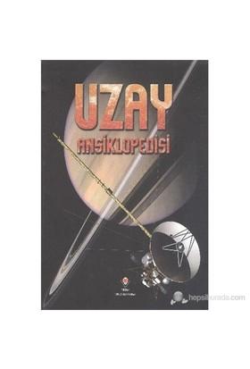 Uzay Ansiklopedisi - Mike Goldsmith