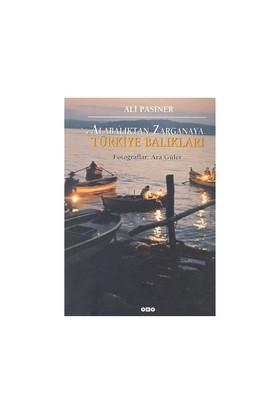 Alabalıktan Zarganaya - (Türkiye Balıkları)-Ali Pasiner