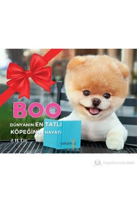 Boo - Dünyanın En Tatlı Köpeğinin Hayatı - J. H. Lee