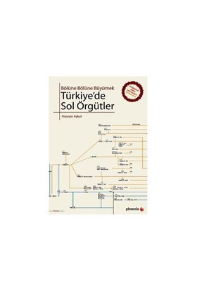 Bölüne Bölüne Büyümek - Türkiye'de Sol Örgütler