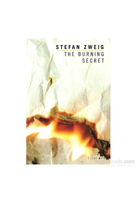 The Burning Secret - Stefan Zweig