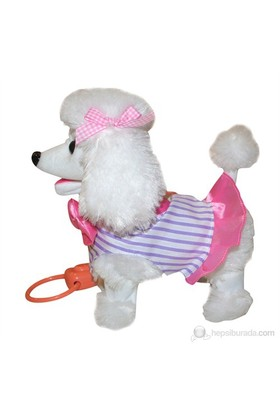 Furkan Süslü Köpeğim