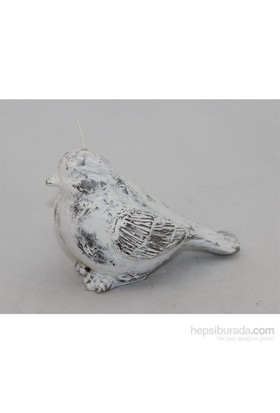 Kankashop Mum Kuş