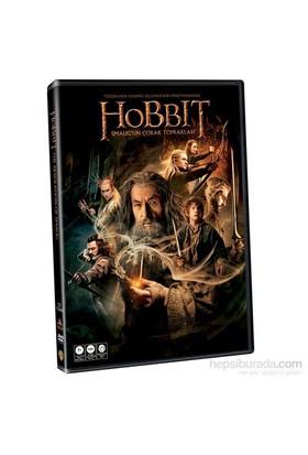 Hobbit: The Desolation of Smaug (Hobbit: Smaug'un Çorak Topraklarında)(DVD)