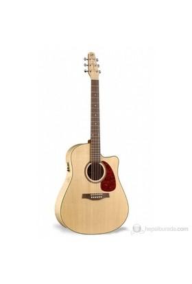Seagull Performer CW Flame Maple Elektro Akustik Gitar (Taşıma Çantası Hediye)