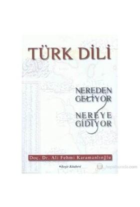 Türk Dili-Ali Fehmi Karamanlıoğlu