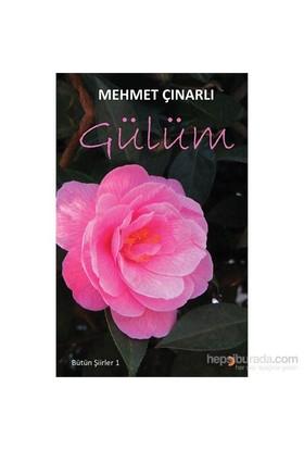 Gülüm - Bütün Şiirleri 1-Mehmet Çınarlı