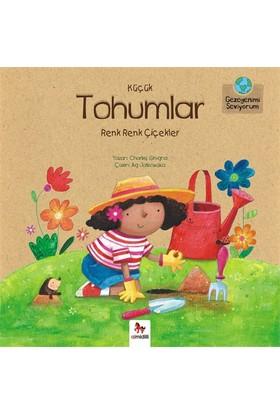 Gezegenimi Seviyorum: Küçük Tohumlar, Renk Renk Çiçekler-Charles Ghigna