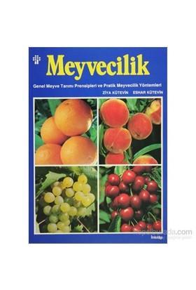 Meyvecilik - Genel Meyve Tarımı Prensipleri ve Pratik Meyvecilik Yöntemleri