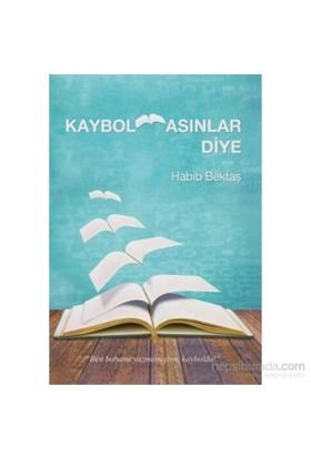 Kaybolmasınlar Diye-Habib Bektaş