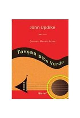 Tavşan Dibe Vurdu - John Updike
