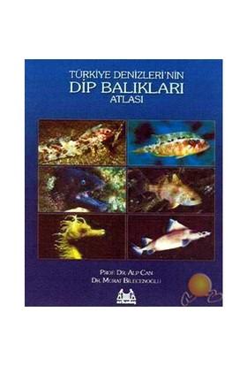 Türkiye'denizlerin Dipbalıkları Atlası