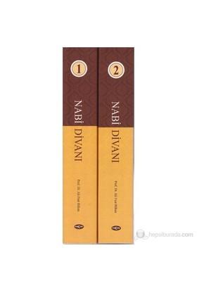 Nabi Divanı (2 Kitap Takım)-Ali Fuat Bilkan