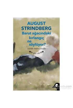 Barut Ağacındaki Kırlangıç Ne Söylüyor?-August Strindberg