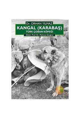 Kangal (Karabaş) Türk Çoban Köpeği - Orhan Yılmaz