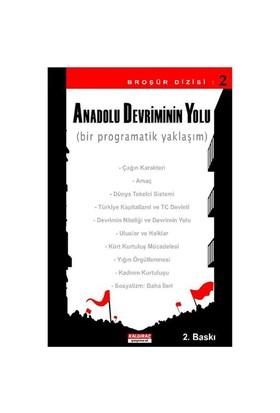 Anadolu Devriminin Yolu - Bir Programatik Yaklaşım