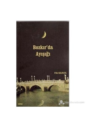 Bozkır'Da Ayışığı-Filiz Kılıncel