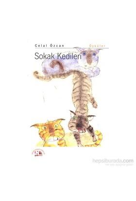 Sokak Kedileri-Celal Özcan