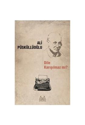 Dile Karışılmaz Mı (Dil Ve Şiir Yazıları)-Ali Püsküllüoğlu