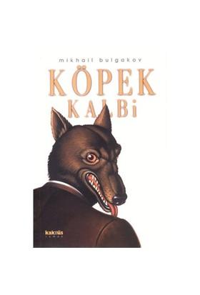 Köpek Kalbi - Mihail Afansyeviç Bulgakov