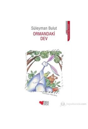 Ormandaki Dev-Süleyman Bulut