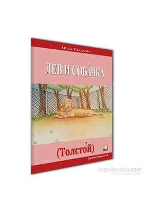 Tolstoy - Aslan Ve Köpek