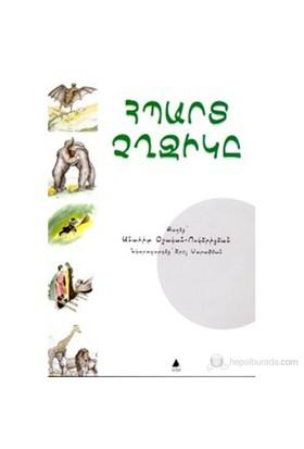 Hıbard Çığçigı Kendini Beğenmiş Yarasa Çocuk Hikayeleri-Anahit Vosgeriçyan