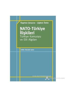 Nato-Türkiye İlişkileri - Türkiye Kamuoyu ve Elit Algıları