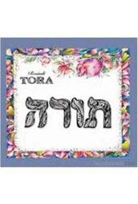 Resimli Tora-Kolektif