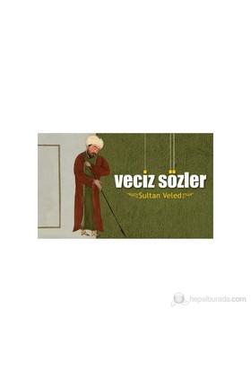 Veciz Sözler Sultan Veled-H. Erol Yıldız