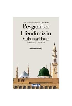 Peygamber Efendimizin Muhtasar Hayatı - (Kısas-ı Enbiya ve Tevarih-i Hulefa'dan) - Ahmed Cevdet Paşa