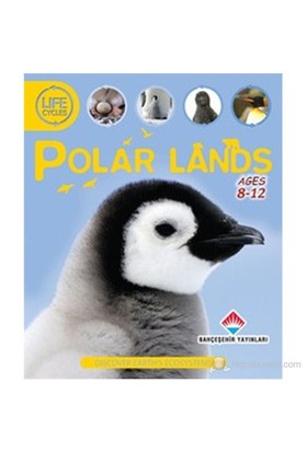 Life Cycles - Polar Lands (Discover Earth's Ecosystems)