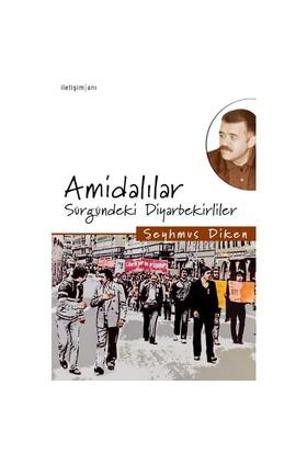 Amidalılar - Sürgündeki Diyarbekirliler