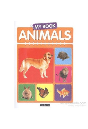 My Book Animals-Kolektif