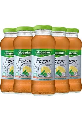 Doğadan Form Limonlu Prebiyotik 250 ml 9'lu Paket