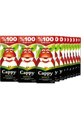 Cappy Elmalı 200 ml Tetra 27'li