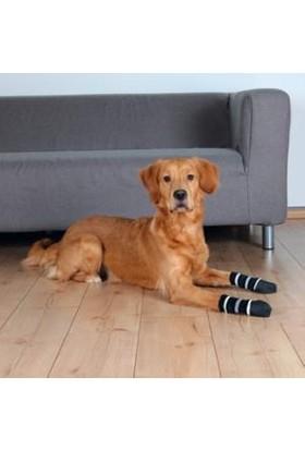 Trixie Köpek Çorabı, Kaymaz M-L, 2 Adet