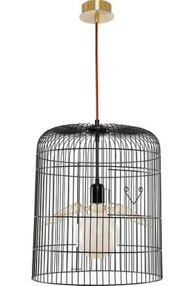 Parlaq Mimarlık Wired Neo Siyah Cage Sarkıt