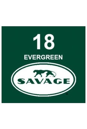 Savage (U.S.A) Stüdyo Kağıt Fon Evergreen 271x1100 cm