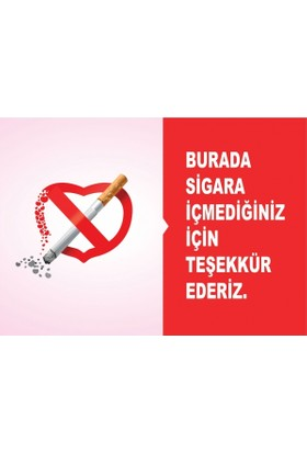 At 1041 - Burada Sigara İçmediğiniz İçin Teşekkür Ederiz