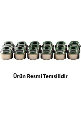 VICTOR REINZ FORD KA Subap Lastiği 2008 - 2011 (55190344)