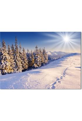 Hepsiburada Home Kar Manzarası Kanvas Tablo