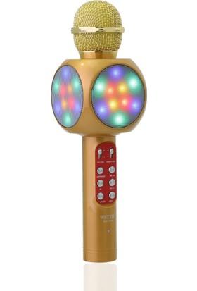 TechnoStyle Profesyonel Hareketli Işık Tasarımlı Wireless Karaoke Mikrofon WS 1816