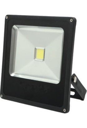 Foblight 10W Led Projektör
