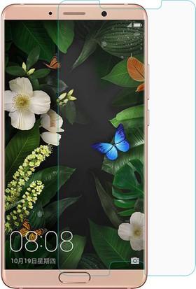 Microsonic Huawei Mate 10 Temperli Cam Ekran koruyucu film