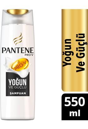 Pantene Şampuan Yoğun ve Güçlü 550 ml