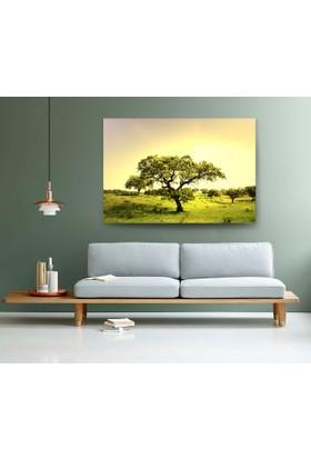 Evdeka Ağaçlar İçinde Bir Ağaç Temalı Kanvas Tablo
