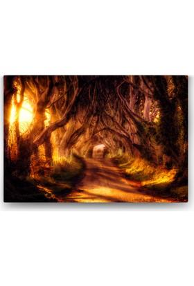 Evdeka Ormanın Derinlikleri Temalı Kanvas Tablo